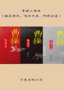 《曹操三部曲》电子书 (魏武雄风、喋血中原、阿瞒出道) 子金山 azw3+mobi+epub kindle电子书下载