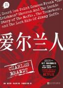 《爱尔兰人》 查尔斯·勃兰特 epub+mobi+azw3+pdf kindle电子书下载