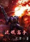 《流氓高手》小说全集 电子书下载 无罪 txt+mobi