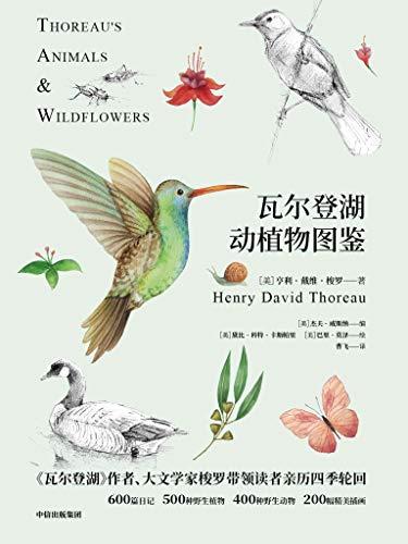 《瓦尔登湖动植物图鉴》亨利・戴维・梭罗